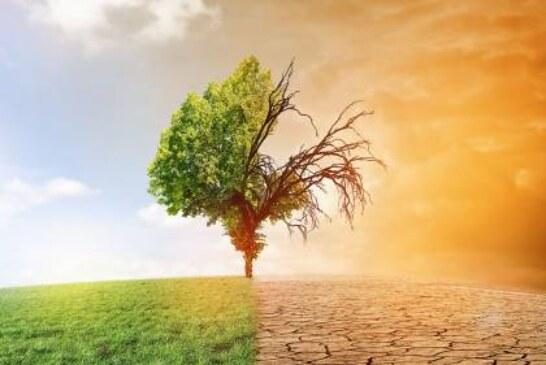 Вильфанд рассказал, надо ли бояться глобального потепления