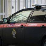 В Татарстане женщина убила сына и покончила с собой