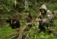 Биолог рассказала о методике реабилитации медвежат-сирот Пажетнова
